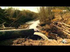 Gold Rush Alaska Season 5 Episode 2 From The Ashes Discovery Channel, Gold Rush, Dream Job, Alaska, Seasons, Tv, World, Youtube, Seasons Of The Year