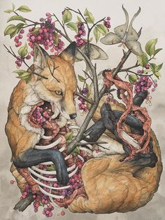 """This piece is framed!  """"Vulpes vulpes"""", 2015, Ball point pen, Ink pencils, Acrylic ink, Marker, Colored pencil, Graphite, and Gel pen on"""