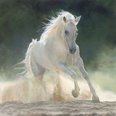 Oil Paintings by Marie Channer
