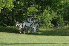 Wedding and Reception Venues Gallery Dallas Fort Worth Texas   MD Resort