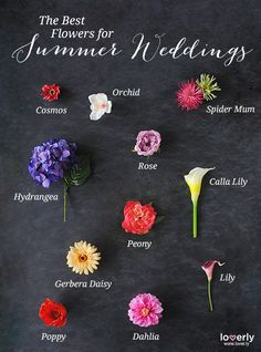 Wedding Tip: The best flowers for summer weddings! #summerweddings #flowers