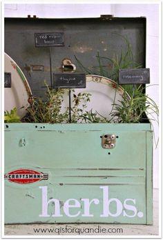 an herb toolbox, con