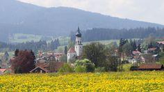 Allgäu: Wertach im Frühjahr. Wertach liegt im Oberallgäu (900 m ü.d.M.) am Fuße des Grünten an der Wertach