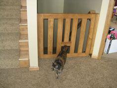 Delightful Baby Gate For Steps With Cat Door
