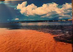 Encontro das águas. Manaus -  Amazon