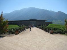 Montes Winery, Colchagua, Chile
