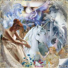 The Fairies and Unicorns