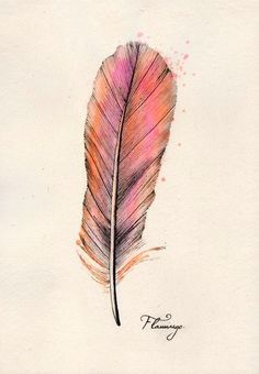 flamingo feather (black, pink, coral)