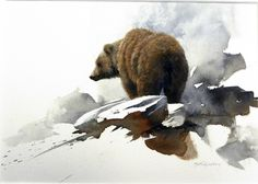 Grizzly bear   - watercolor painting by Morten E. Solberg