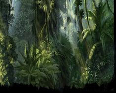 fantasy jungle   JUNGLE - trees, fern, forest, drawing, sunrays, digital, green
