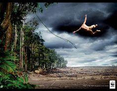 Best Environmental Ads - Powerful Environmental Ads - The Daily Green