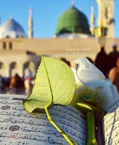 Quran Wallpaper, Mecca Wallpaper, Islamic Quotes Wallpaper, Islamic Love Quotes, Best Islamic Images, Muslim Images, Islamic Pictures, Masjid Haram, Al Masjid An Nabawi