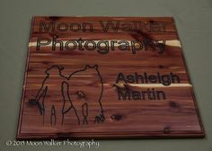 """Moon Walker Photography"" 