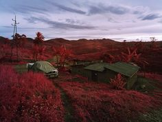 North Kivu, Eastern Congo The photographer   Richard Mosse  use one  type of color infrared film called Kodak Aerochrome. , rendering the green landscape in vivid hues of lavender, crimson, and hot pink.