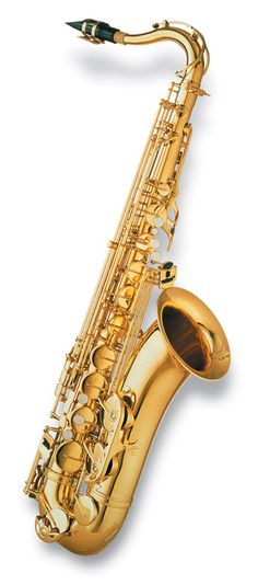 Those saxophone lessons you always wanted to start....