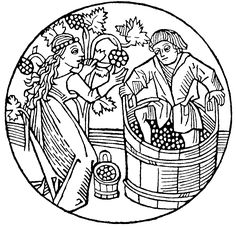 first crush it s a grape story Parts of a Grape image result for grape pruning vintage woodcut lino art wine label illustration vineyard