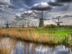 The Netherlands is famous for its windmills. Today there are still more than 1.000 mills. Nowhere in the world you will find as many windmills as near (the Dutch village) Kinderdijk. Around 1740 no less than 19 sturdy mills were built here. They have been well preserved to the present day.    The mills drain the excess water from the Alblasserwaard polders - which are situated below sea-level - after which the water is sluiced into the river Lek (the Rijn).