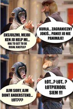 Pin by Paulina Kijewska on Memy Really Funny Memes, Wtf Funny, Polish Memes, Funny Mems, Dead Memes, Disney Memes, Sarcastic Humor, Life Humor, Funny Animals