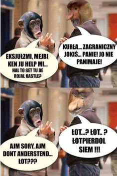 Pin by Paulina Kijewska on Memy Really Funny Memes, Wtf Funny, Polish Memes, Weekend Humor, Funny Mems, Dead Memes, Quality Memes, Bad Mood, Disney Memes