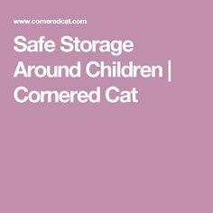 Safe Storage Around Children | Cornered Cat
