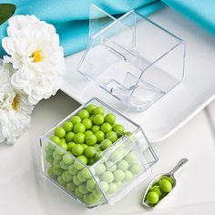 Perfectly Plain Collection Candy Bin & Scoop Favors