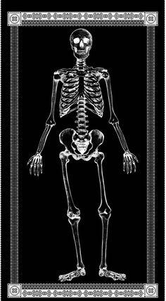 Mr Bones Halloween Fabric Panel Large Skeleton Glows In The Dark Timeless Treasures