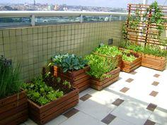 horta em casa - Pesquisa Google