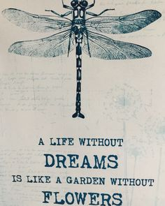 A life without dreams is like a garden without flowers.
