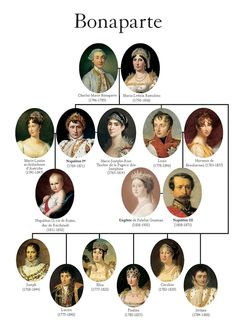 Napoleon and the Napoleon Wars- This is a good representation of the Bonaparte family tree. French History, European History, World History, Family History, Tudor History, Modern History, Marie Bonaparte, Ile D Aix, Royal Family Trees