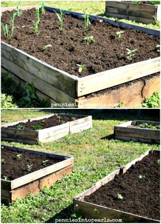 Pallet Wood Raised Garden Beds -  DIY Garden Projects - 101 DIY Ideas to Upgrade Your Garden - DIY & Crafts