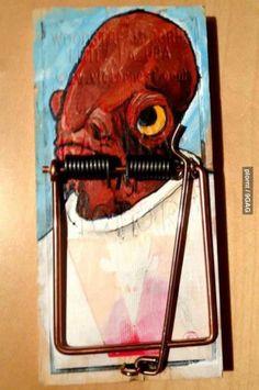 It's a (Rat) Trap! [Picture]