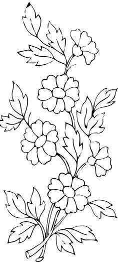 lavandula angustifolia or common lavender coloring page