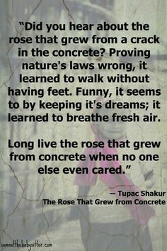 """2Pac Poem """"A Rose That Grew Out Of Concrete"""""""