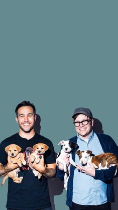 Not in front of the puppies pete emo band memes, emo bands, music bands Fall Out Boy Wallpaper, Boys Wallpaper, Trendy Wallpaper, Wallpaper Ideas, Screen Wallpaper, Emo Bands, Music Bands, Fall Out Boy Songs, Fall Out Boy Memes