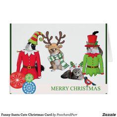 Funny Santa Cats Christmas Card 50%off CYBRWEEKSALE