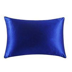 19 Momme Terse/Housewife Zipper Closure 100% Mulberry Silk Pillowcase MSP001