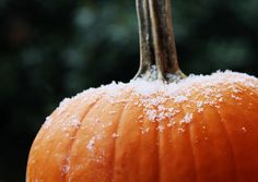 The frost is on the pumpkin and the hay is in the barn...James Taylor