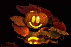 Pumpkin Carving, Halloween, Fall, Autumn, Fall Season, Pumpkin Carvings, Spooky Halloween