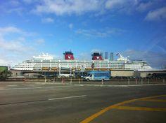 Cruising Out Of Galveston Texas Has Port Excursions That Allow - Cheap cruises out of galveston