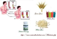 Achalasia Types   Natural Treatment for Achalasia - Natural Herbs Clinic