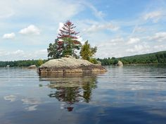 August 14, 2012 Come With Me Kayaking on Lake Alamoosook Today! Photo Journey. | Plein Aire in Maine