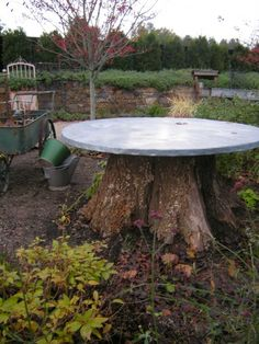We have a very large tree on our property that we'd like to take out, I'd love to put a concrete top on it!