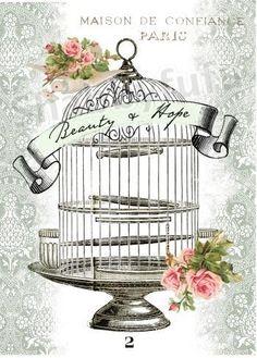 birdcage.