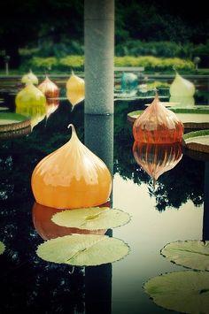 Chihuly Pond <-swoon