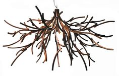 Brothers Dressler . branches chandelier