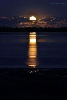 The wind has blown a warm yellow moon up over the sea; a bulbous moon, which sprouts in the soiled indigo sky, and spills bright winking petals of light on the quivering black water. Beautiful Moon, Beautiful World, Beautiful Scenery, Shoot The Moon, Moon Pictures, Moon Pics, Time Pictures, Harvest Moon, Belle Photo