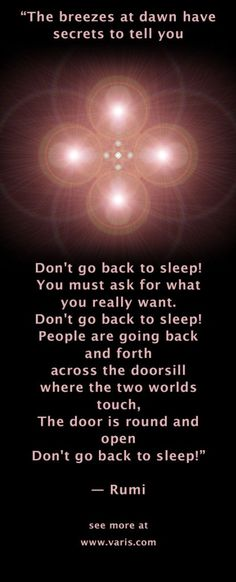 Don't go back to sleep! – Rumi