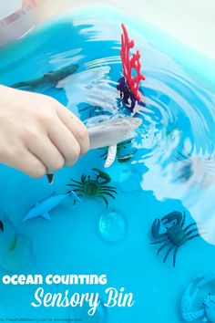 Ocean Sensory Bin for hands-on fun and learning in preschool!