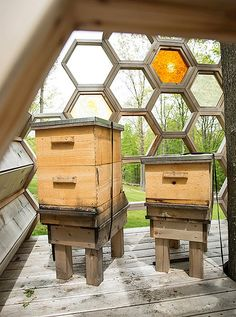 Not only is the elevated bee house an intriguing focal point, it also keeps the beehives safe from bears.
