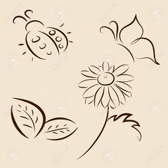 Hand drawn vector illustration of leafs, ladybird, butterfly and chamomile Stock Vector - 14453744